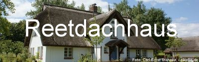 Reetdach Immobilien