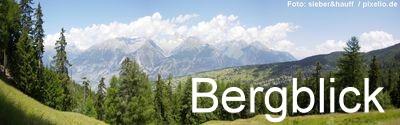 Bergblick Immobilien